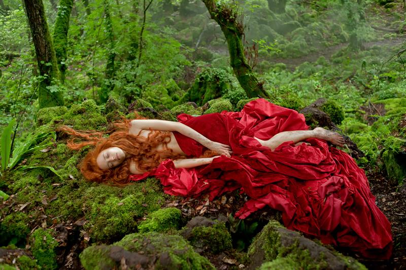 Dora nel bosco